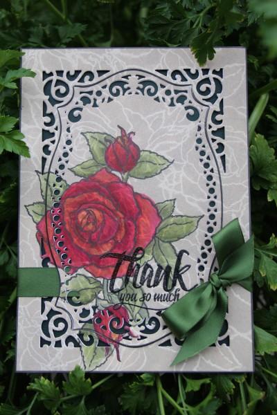 Card desgined by Cathie Allan featuring @stampendous @spellbinders @cdnscrapbooker #spellbinders #stampendous #canadianscrapbookermagazine #cathieallan @cathieallan