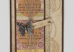 Hello Butterfly