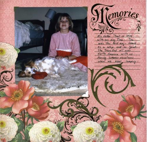 dcwv memories
